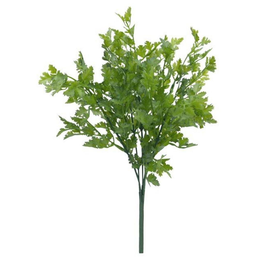 Folhagem de Salsinha Verde Permanente 36cm