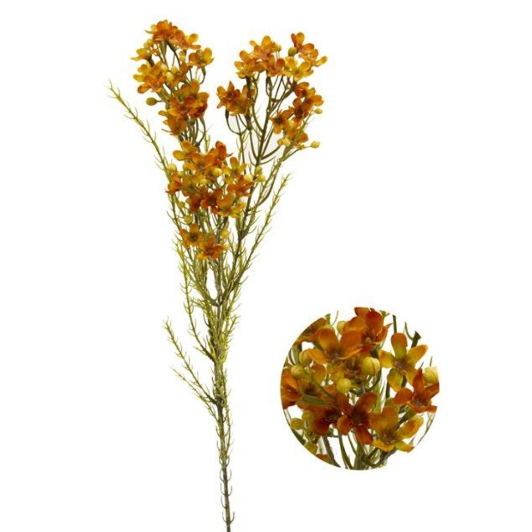 Haste de Asteraceae Laranja e verde Permanente 72cm