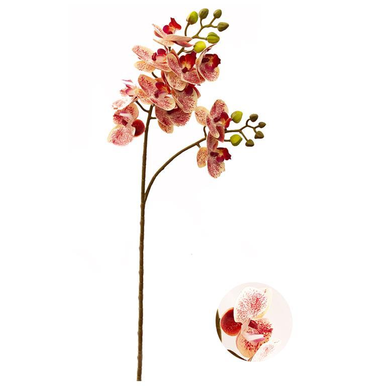 Haste de Orquídea Salmão Permanente 60cm