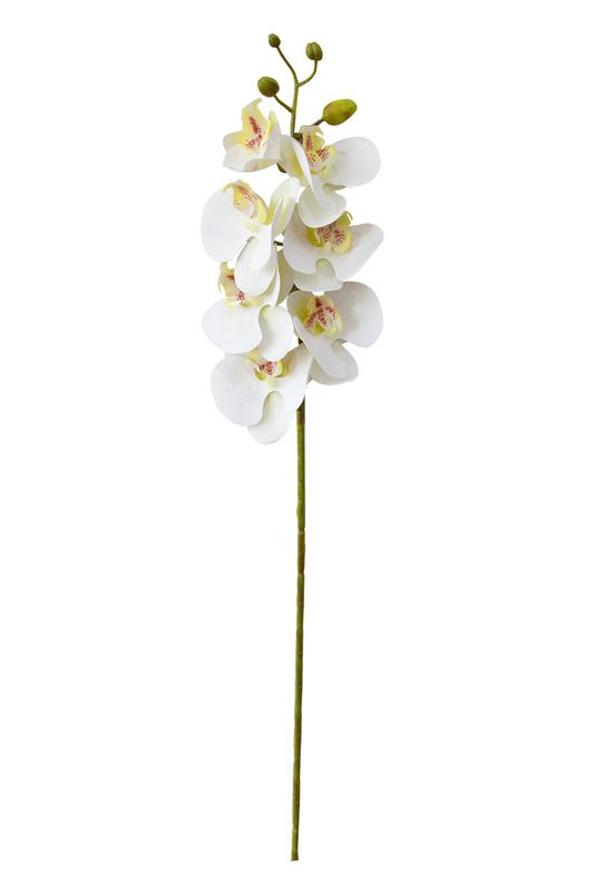 Haste de Orquídea Phalaenopsis Branca Permanente 75cm