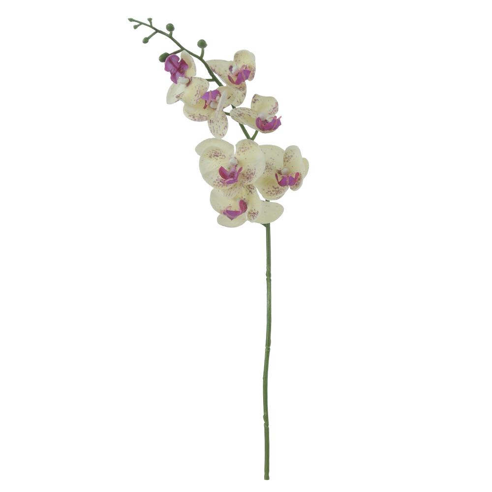 Orquídea Phalaenopsis Bege c/ Roxo Permanente Toque Real 53cm
