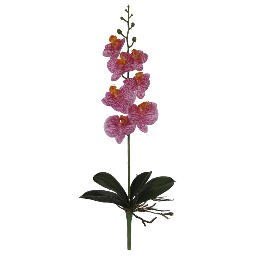 Orquídea Phalaenopsis Rosa c/Folha Toque Real Permanente 45cm