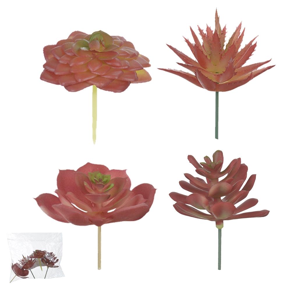 Suculenta Sortidas Coloridas c/4un 8,5cm