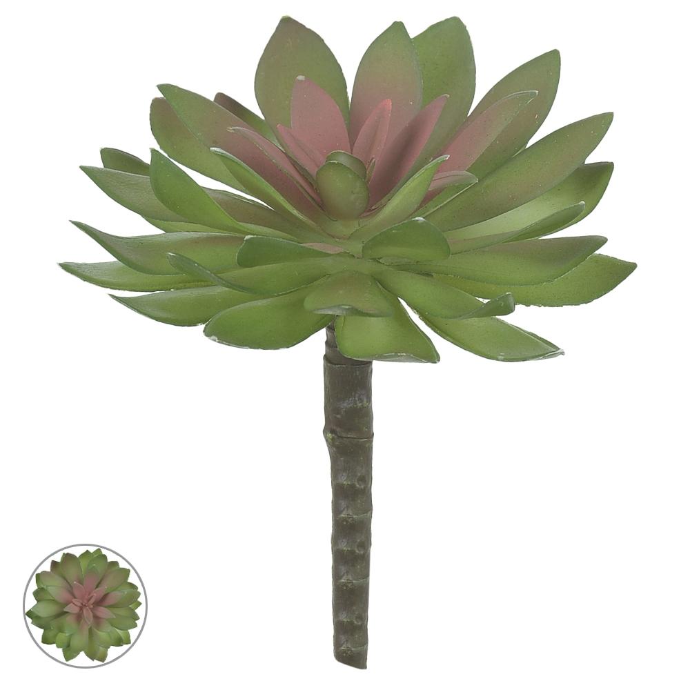Suculenta Verde c/Vermelho 14cm