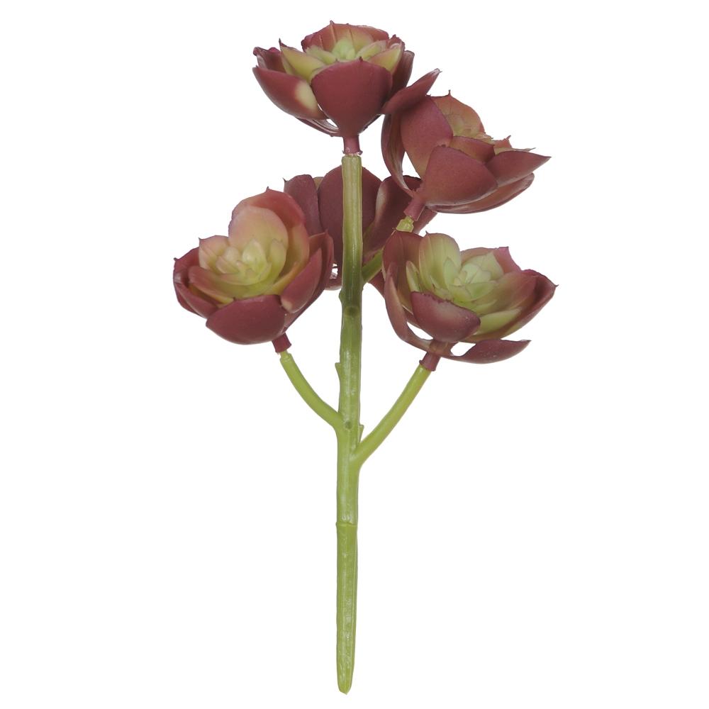 Suculenta Verde c/Vermelho 18cm