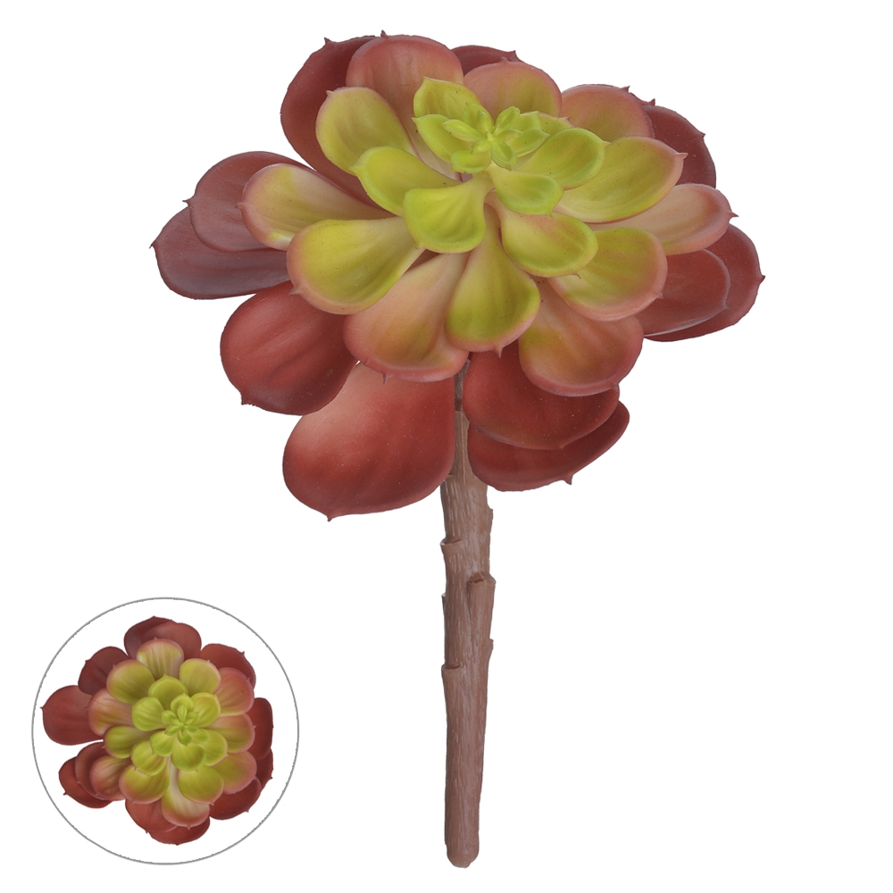 Suculenta Vermelho c/Verde 14cm