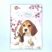 Caderno Brochura Pup 96 Folhas Máxima