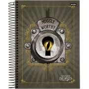 Caderno Espiral Universitário Animais Fantásticos 96 Folhas Jandaia
