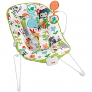 Fisher-Price Cadeirinha Para Bebe Hcf38 Mattel