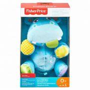 Fisher Price Hipo Atividades Divertidas GFC35 Mattel