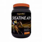 CREATINA ATP 2 KG ORGANNACT