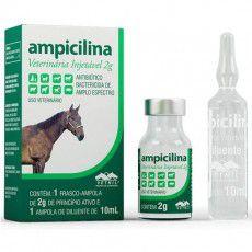 AMPICILINA VETERINARIA 2G VETNIL