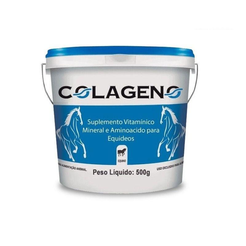 COLAGENO 500GR