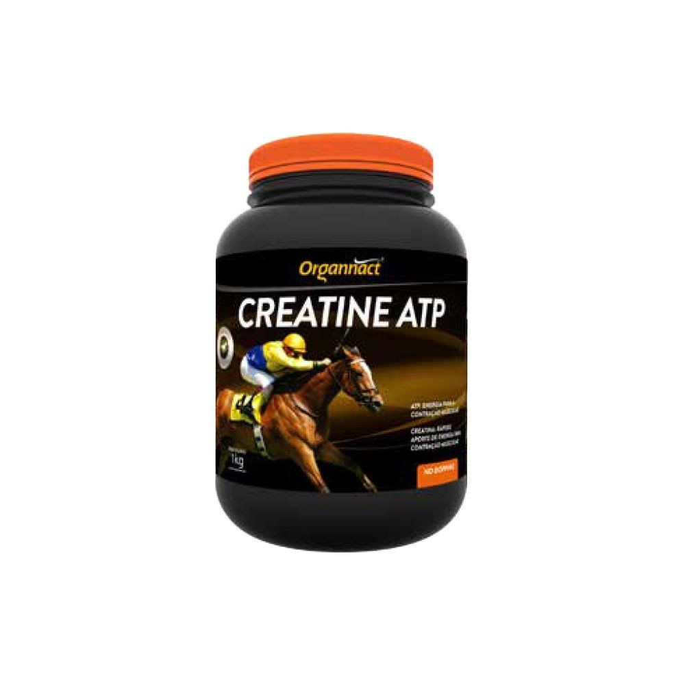 CREATINA ATP 1 KG ORGANNACT