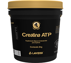 CREATINA ATP 2 KG LAVIZOO