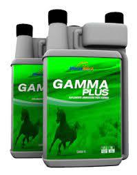 GAMMA PLUS 1LT