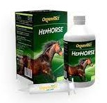 HEPHORSE 500ML