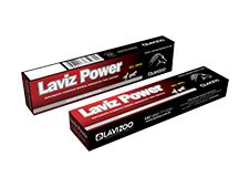 LAVIZ POWER GEL 30GR