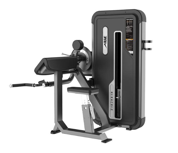 Maquina de Força Profissional - Bíceps/Tríceps Epic Dual - Rae Fitness