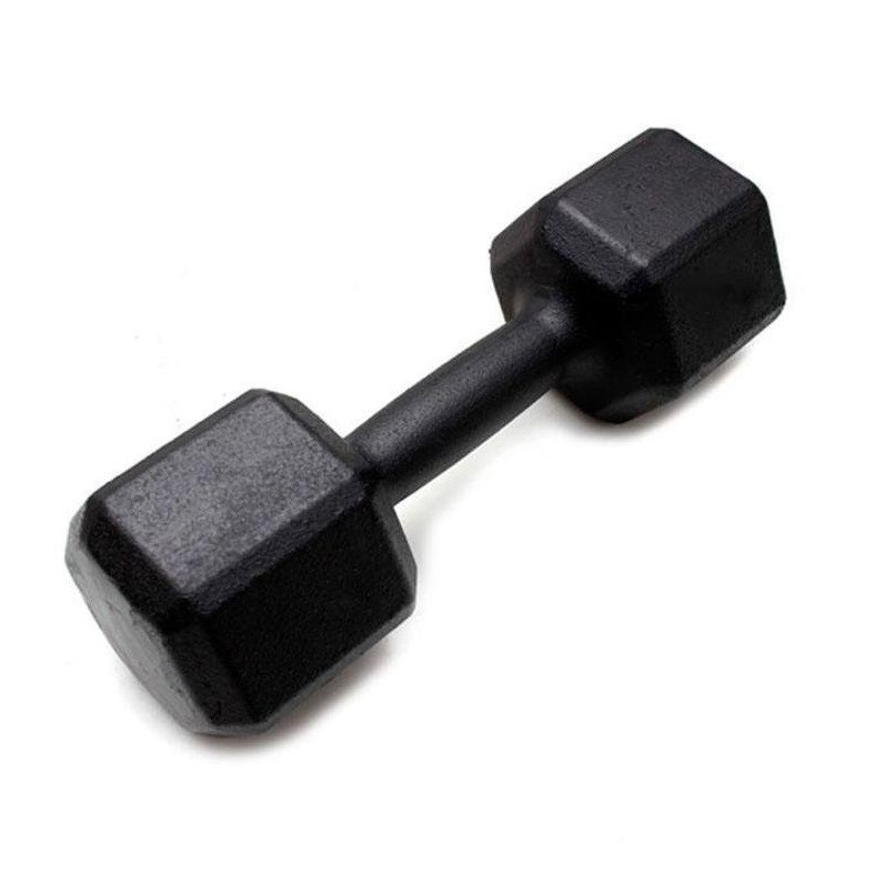 Dumbbell - Halter Sextavado de Ferro Polido 26 kg - Rae Fitness