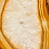 Filete de Ágata Dourada