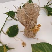 Kit Colar Boas Memórias + Sachê Perfumado Bamboo