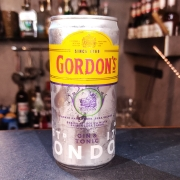 DTG - Gordons Gin & Tonic - 269 ml