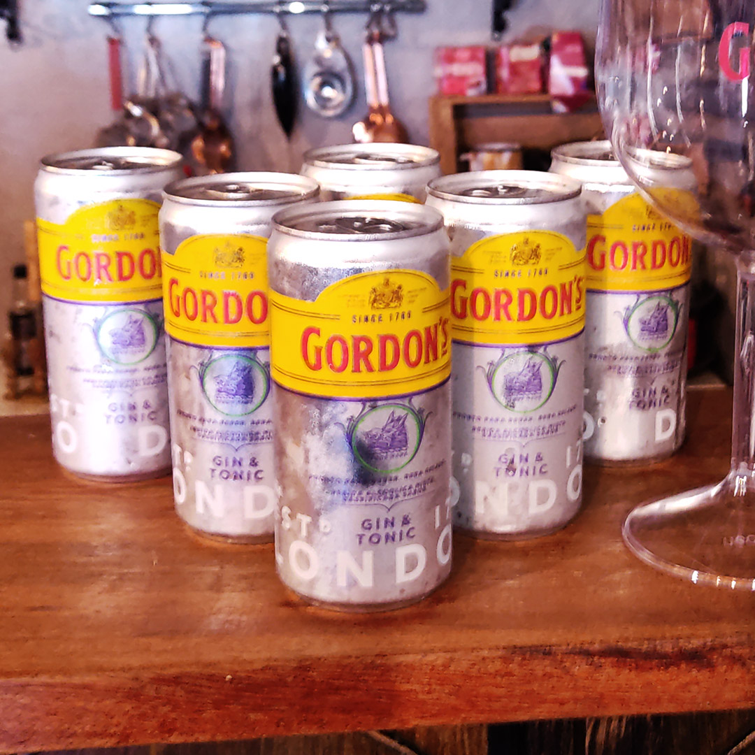 DTG - Gordons Gin & Tonic - 269 ml  - DRUNK DOG DELIVERY