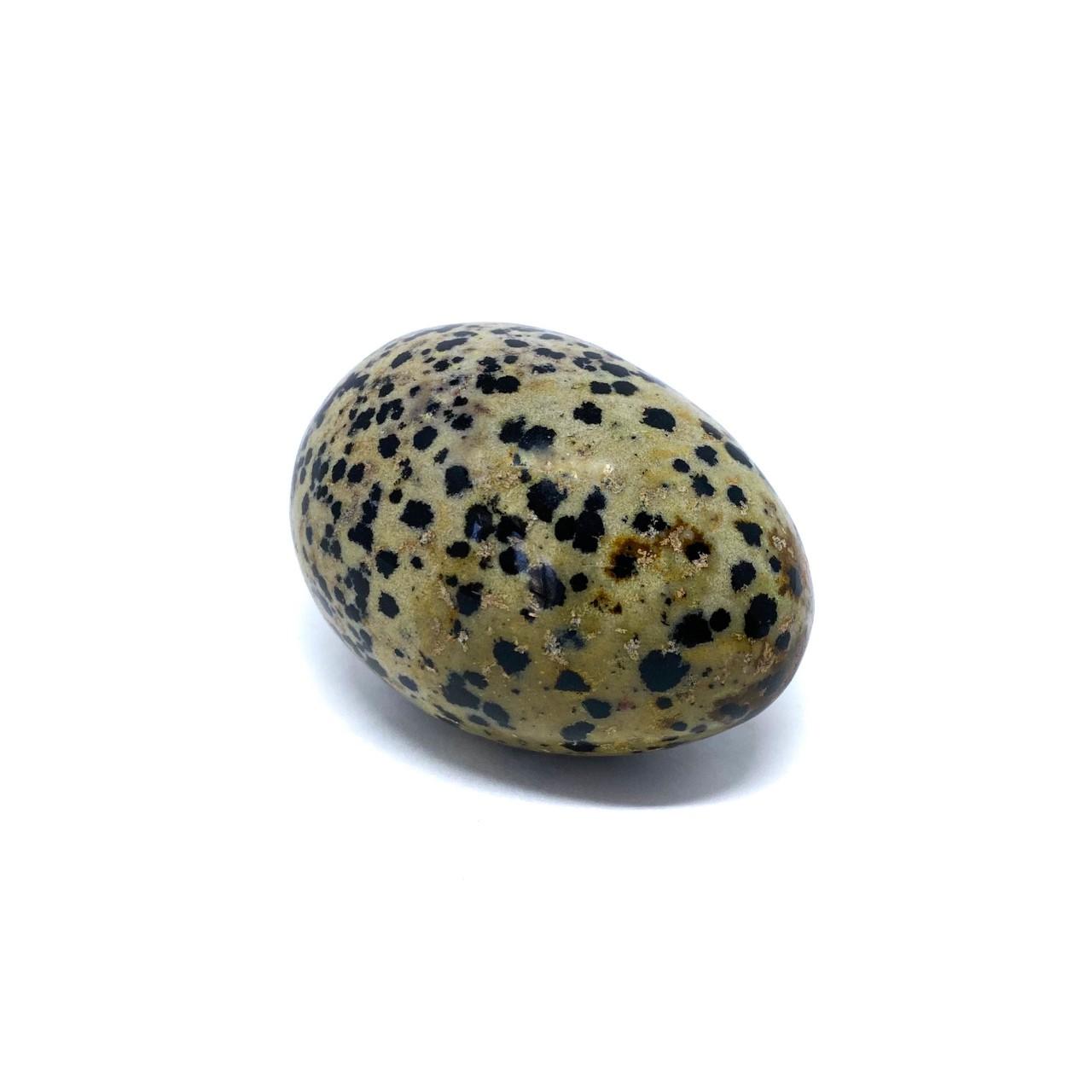Yoni Egg Jaspe Dalmata