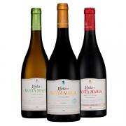 Kit #38 - Vinha de Santa Maria Branco, Vinha de Santa Maria Reserva Tinto e Vinha de Santa Maria Reserva Especial