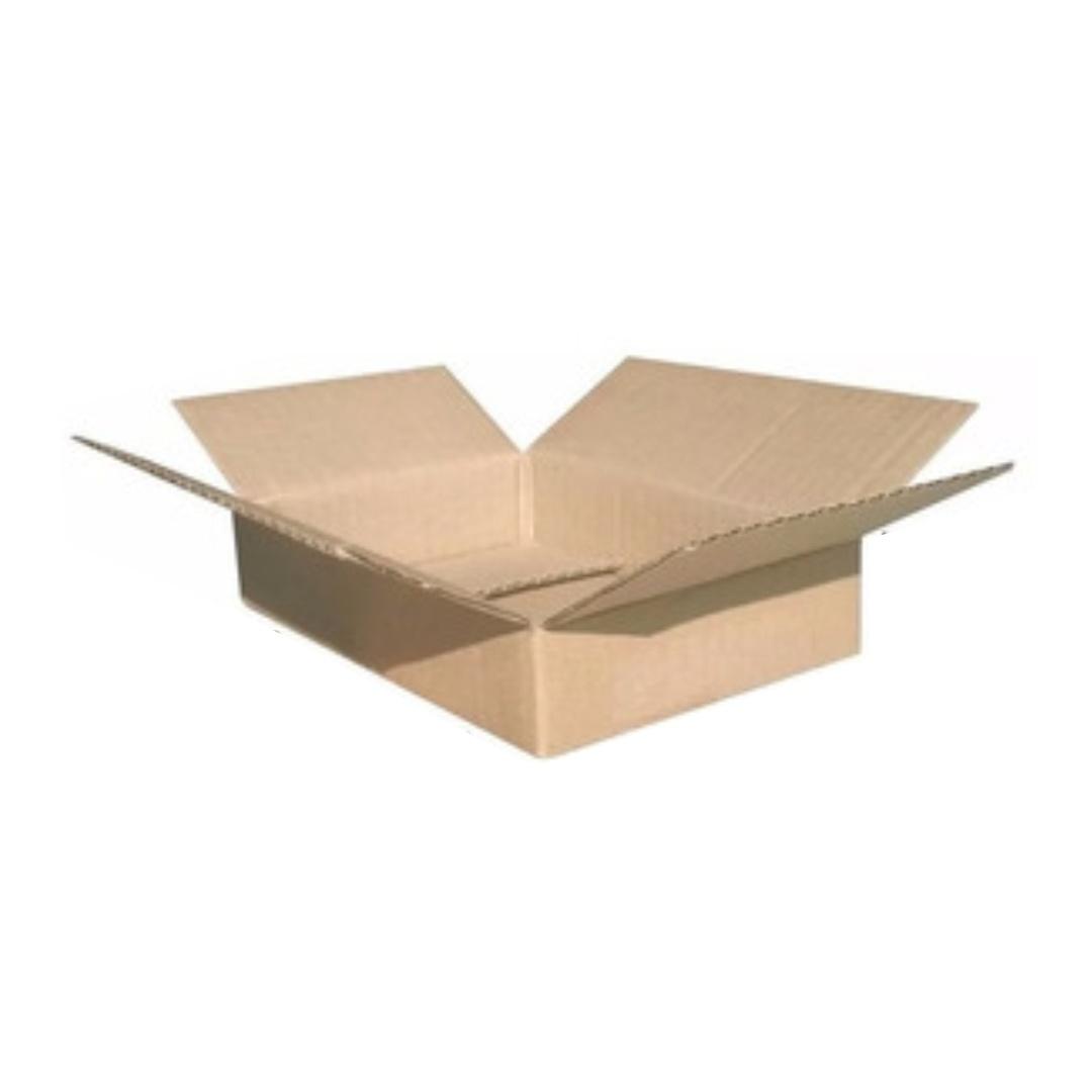 Kit 50 Caixas de Papelão Lisas para Envio dos Correios e E-commerce Mini Pac 24x15x4cm Montável C61
