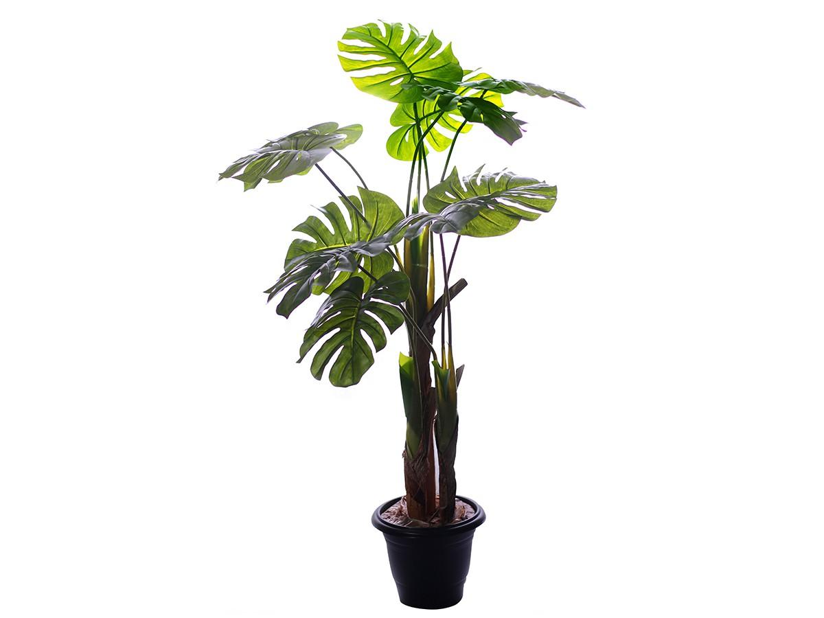 Árvore Artificial Costela de Adão Permanente Toque Real Verde X11 100cm