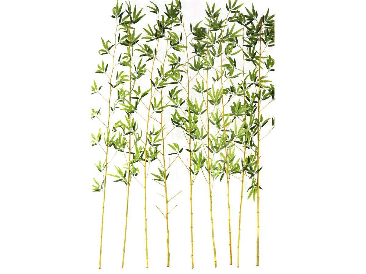 Bambu Reto C/10 Hastes De 2 Metros Cada 3634/4982