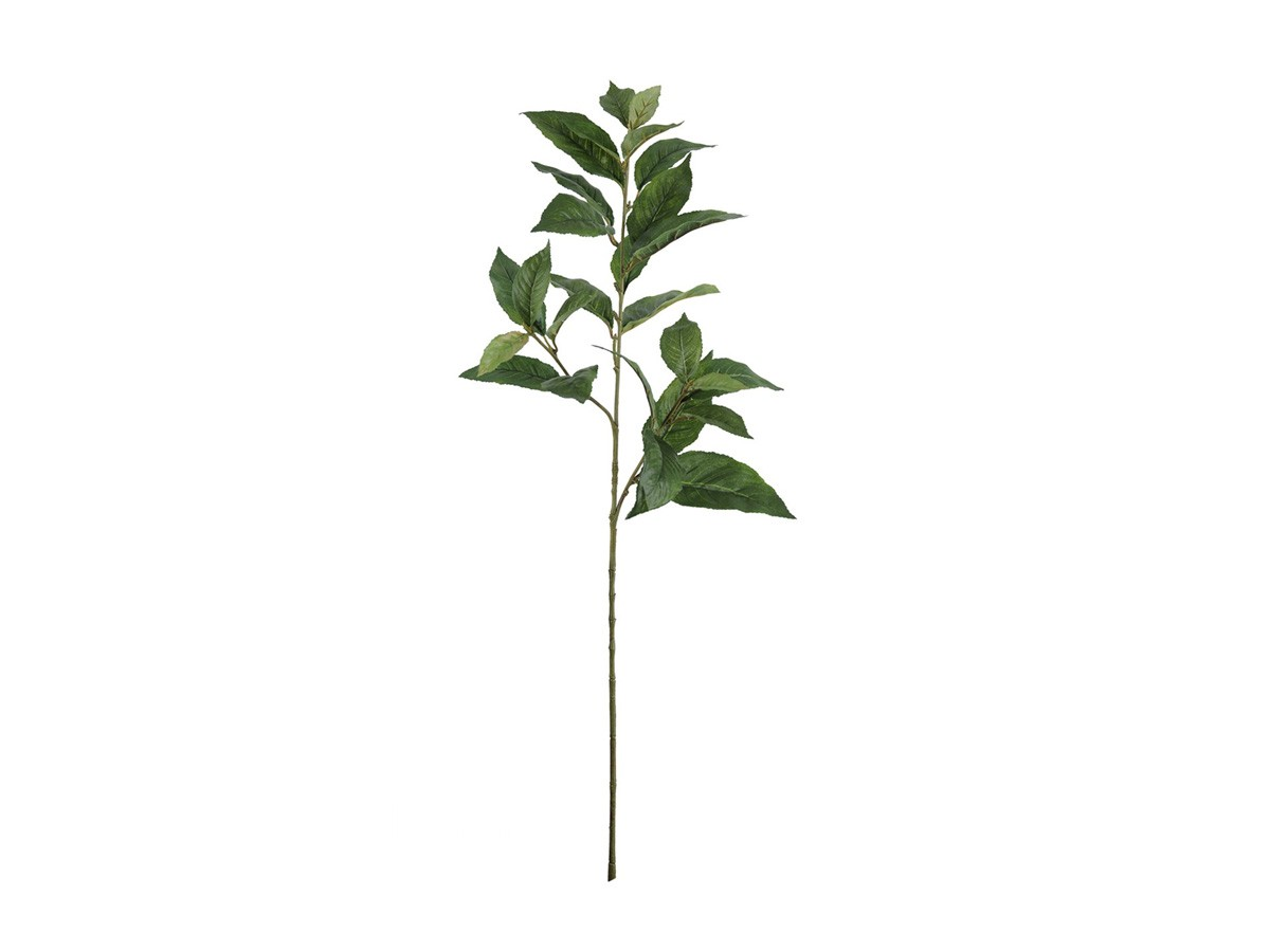 Complemento Folhagem Sanchezia com proteção UV 26 folhas - 80 cm
