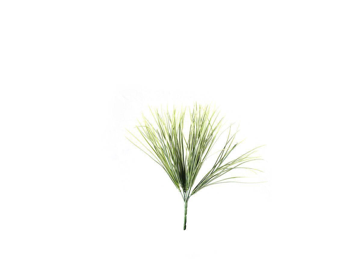 Planta Folhagem Verde/Vermelho X7 35Cm