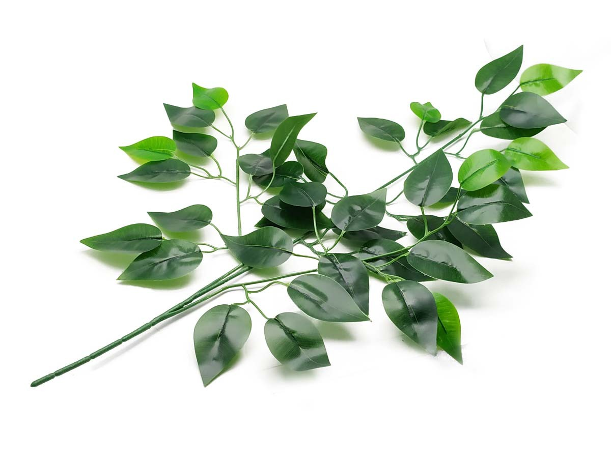 Galho Folha de Ficus Cetim Verde 56cm 12 Galhos
