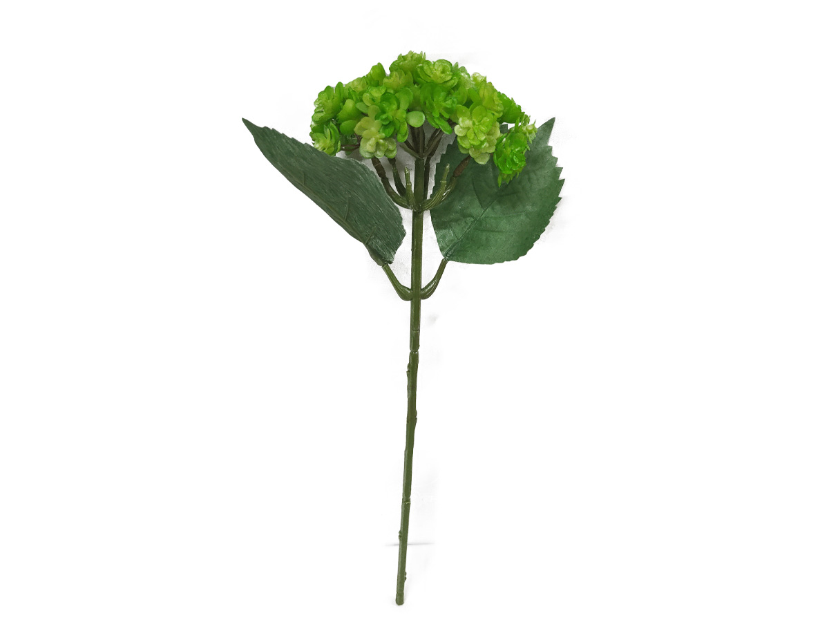 Folhagem Suculenta Echeveria Verde 38 CM