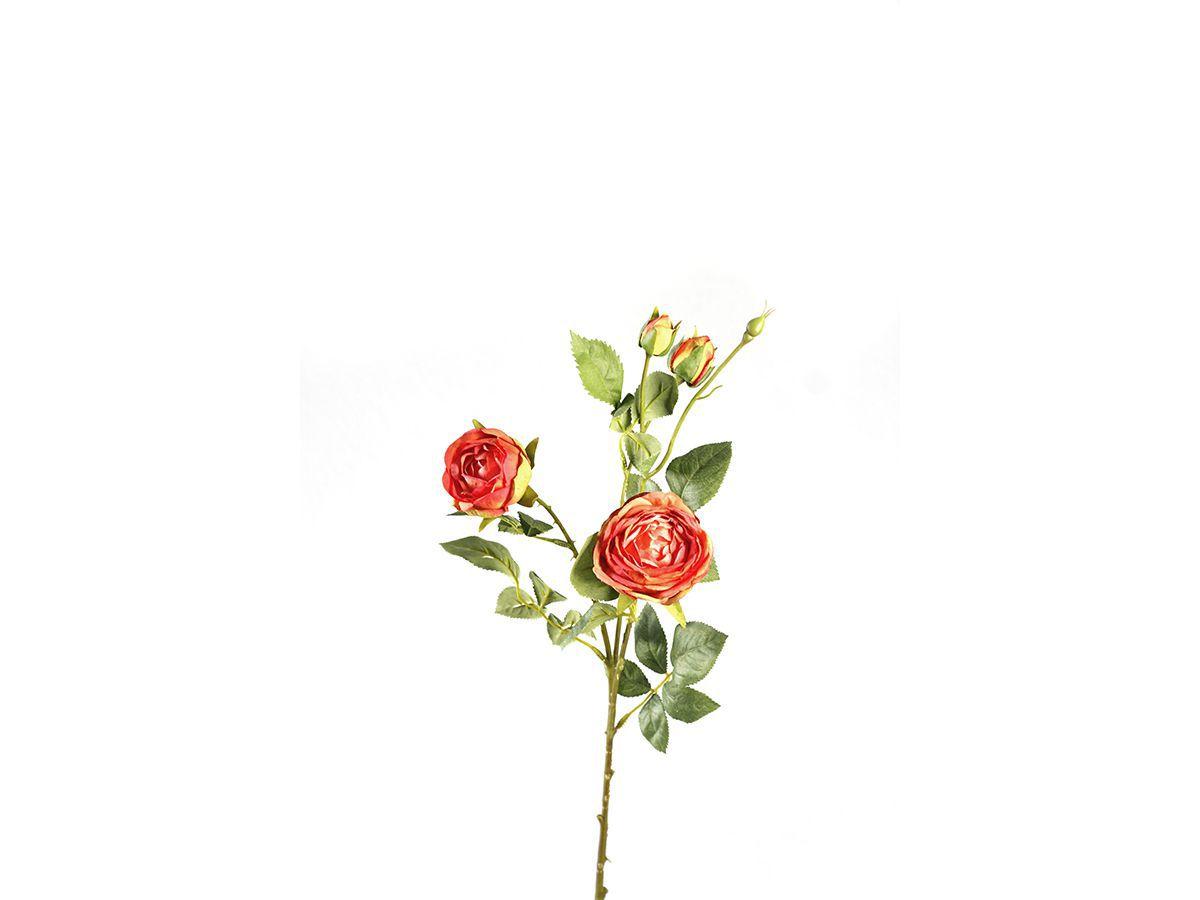 Haste Rosa C/Botao X4   64Cm