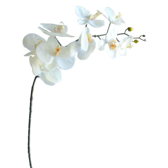 Haste Orquidea Phalaenopsis(Toque Natural) 103Cm