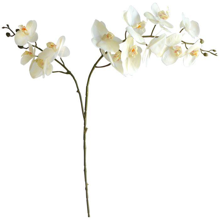 Haste Orquidea Phalaenopsis(Toque Real) X2  100cm