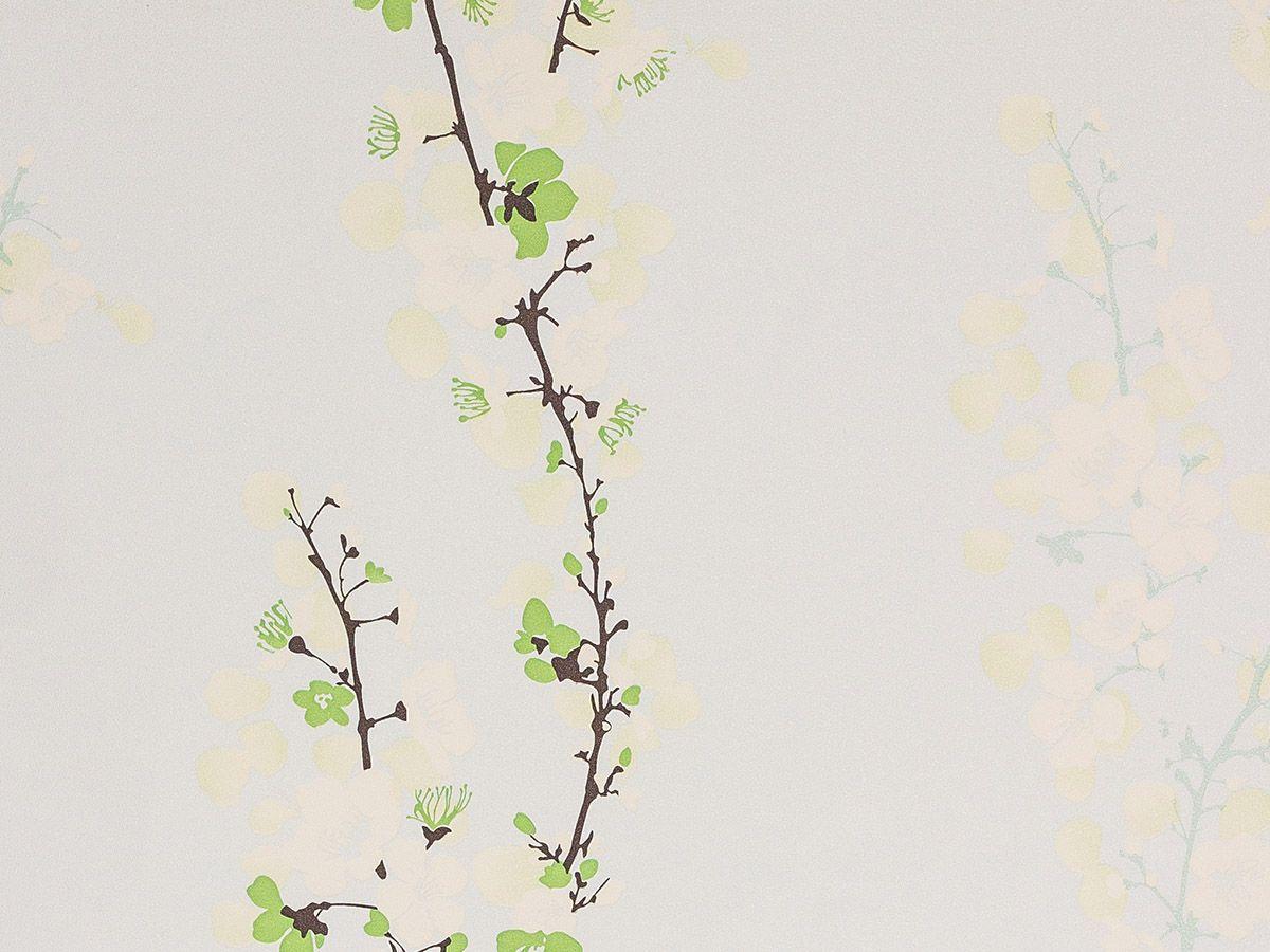 Papel De Parede Liso Galhos Com Flores Verde 3D - 1040