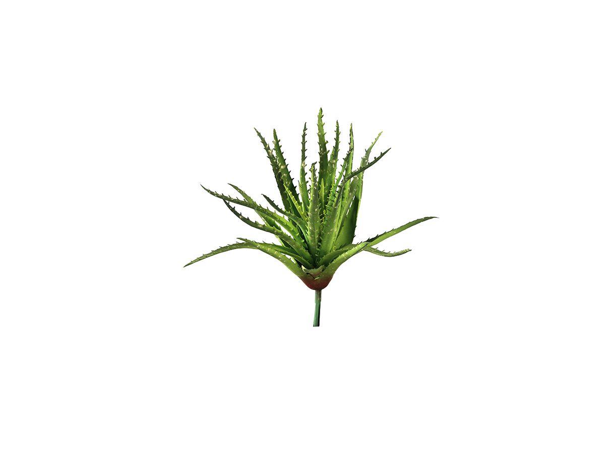 Suculenta Toque Real  Aloe Vera 30Cm