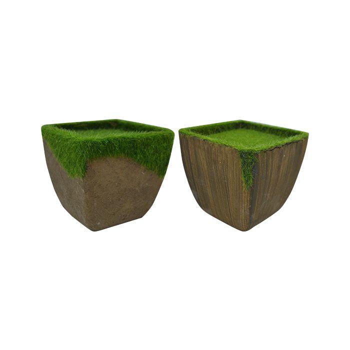 Vaso Pronto Para Plantar C/ Musgo 11Cm 4495