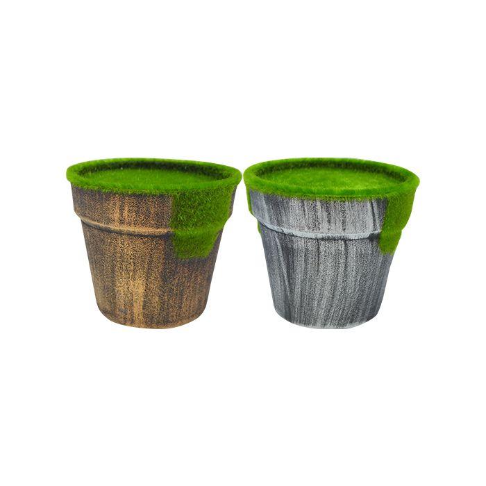 Vaso Pronto Para Plantar C/ Musgo 9.5Cm 4491