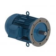 Motor elétrico Weg W22 IR3 Premium 0,25cv 4P 63 3F 220/380 V 60 Hz IC411 - TFVE - B5D