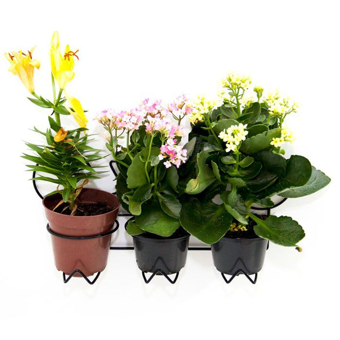 Suporte Vaso de Plantas