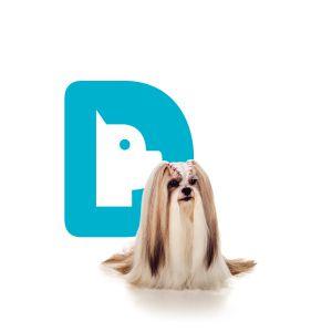 Banho Seco Espuma Dog's Care