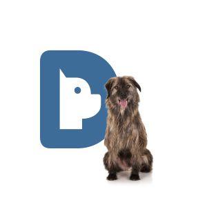 Eliminador de Odor de Urina Dog's Care