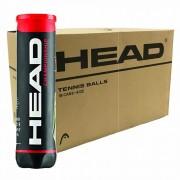 Bola de Tênis Head Championship 4 bolas - Caixa com 18 tubos
