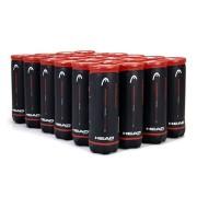 Bola de Tênis Head Championship - Caixa com 24 tubos
